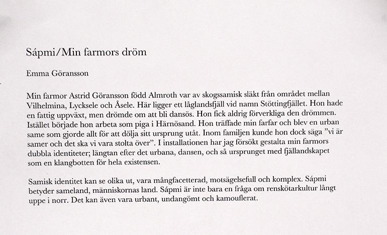 Sápmi/Min farmors dröm - Emma Göransson